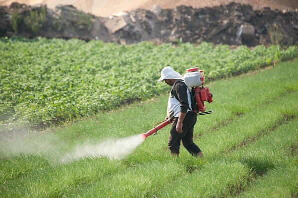Farmer-spreading-pesticides-for-onions-Hamish-John-Appelby-596